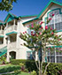 Oak Plantation Resort - Condominium