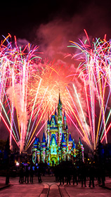Disney's Magic Your Way tickets